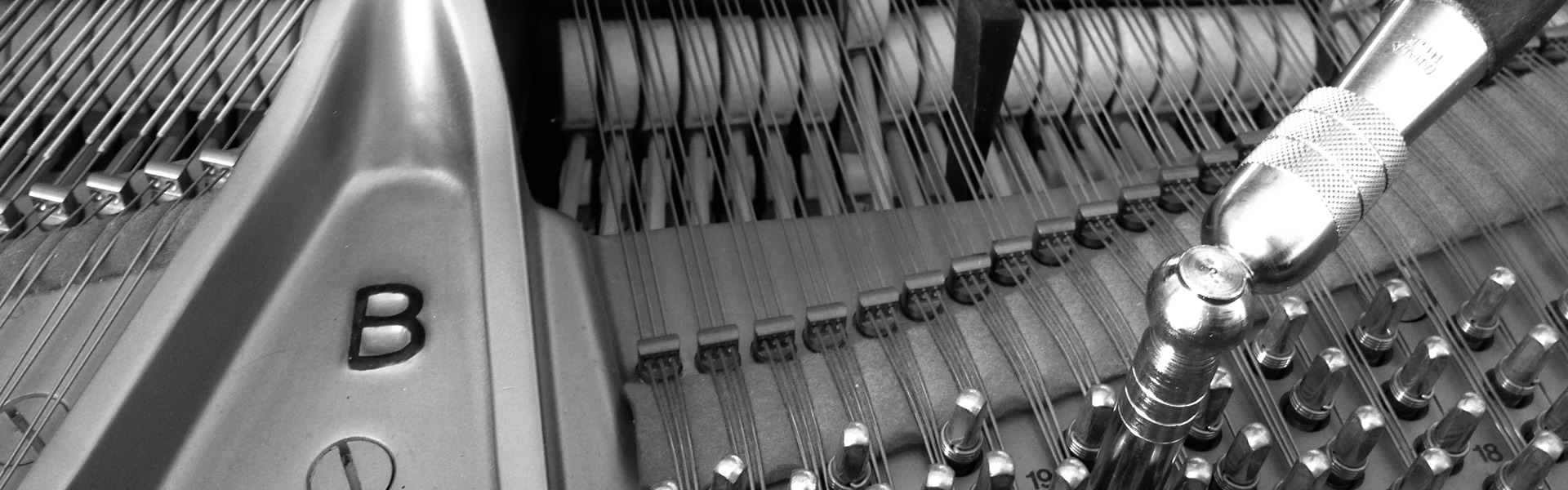 Accordatura Pianoforte Torino | Roberto Martucci